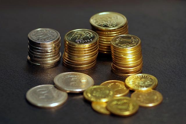 cizí mince.jpg