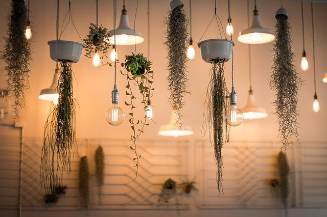 dekorační světla