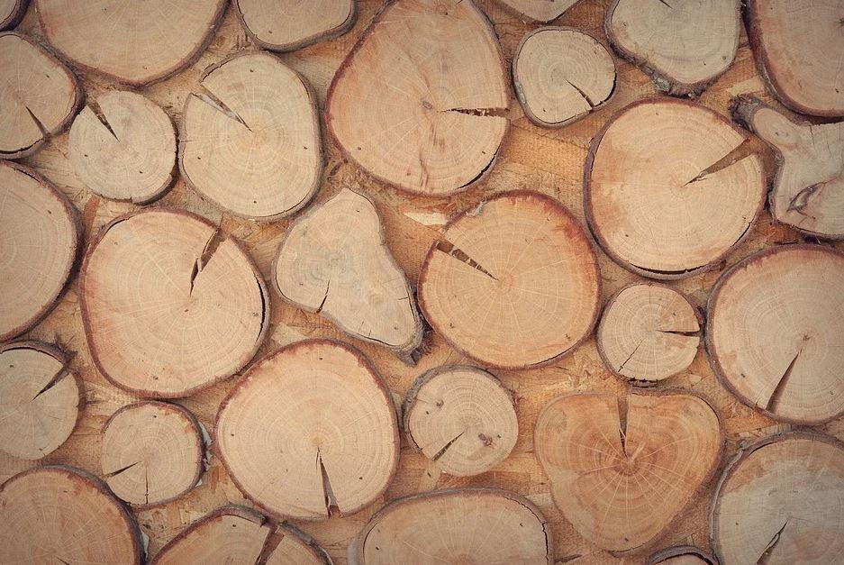 zídka ze dřeva